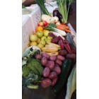 Seasonal Box - Conventional - Funky Bunch - Wonky Fruit N Veg Box